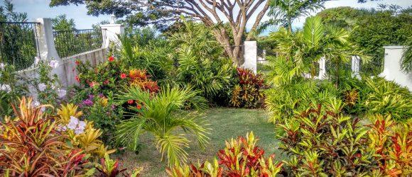Garden by the Entrance